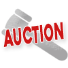 Online Property Auction March 2 - 4 (Viewing Period Begins January 31)